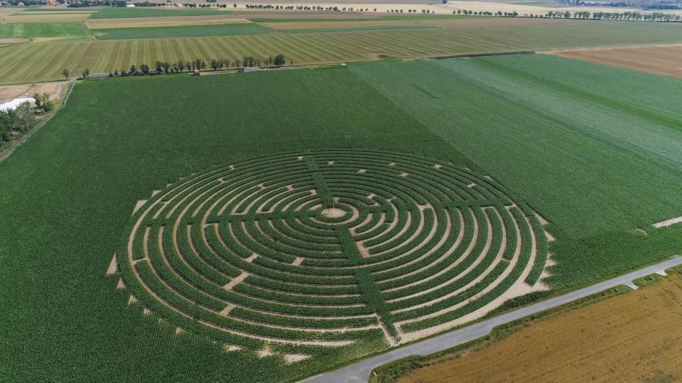 Gigantyczne labirynty kukurydziane